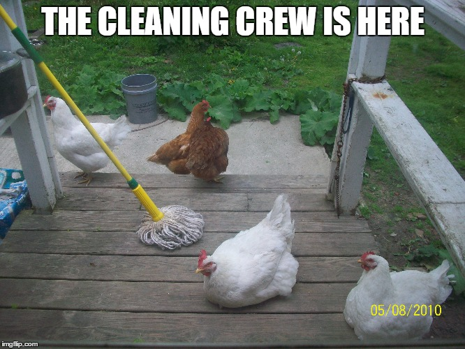The cleaning crew - Imgflip