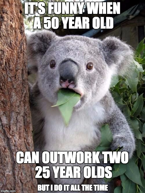 WTF Koala | IT'S FUNNY WHEN A 50 YEAR OLD CAN OUTWORK TWO 25 YEAR OLDS BUT I DO IT ALL THE TIME | image tagged in wtf koala | made w/ Imgflip meme maker