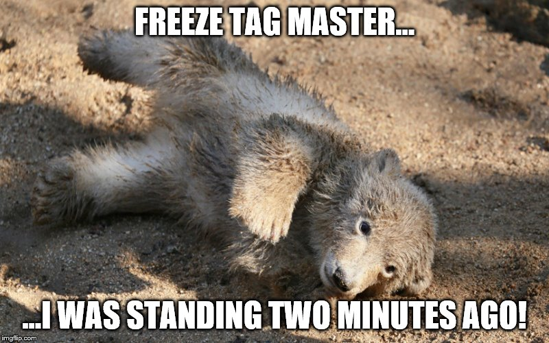 Freeze Tag Master | FREEZE TAG MASTER... ...I WAS STANDING TWO MINUTES AGO! | image tagged in freeze,tag,bear,cub,master | made w/ Imgflip meme maker