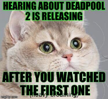 Heavy Breathing Cat Meme Origin