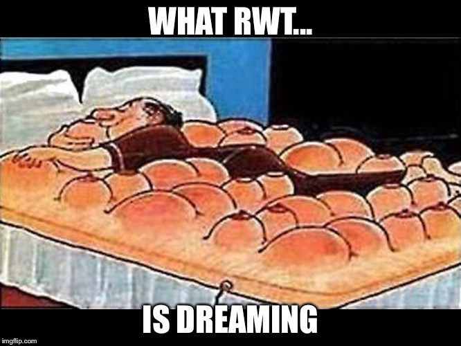 WHAT RWT... IS DREAMING | made w/ Imgflip meme maker