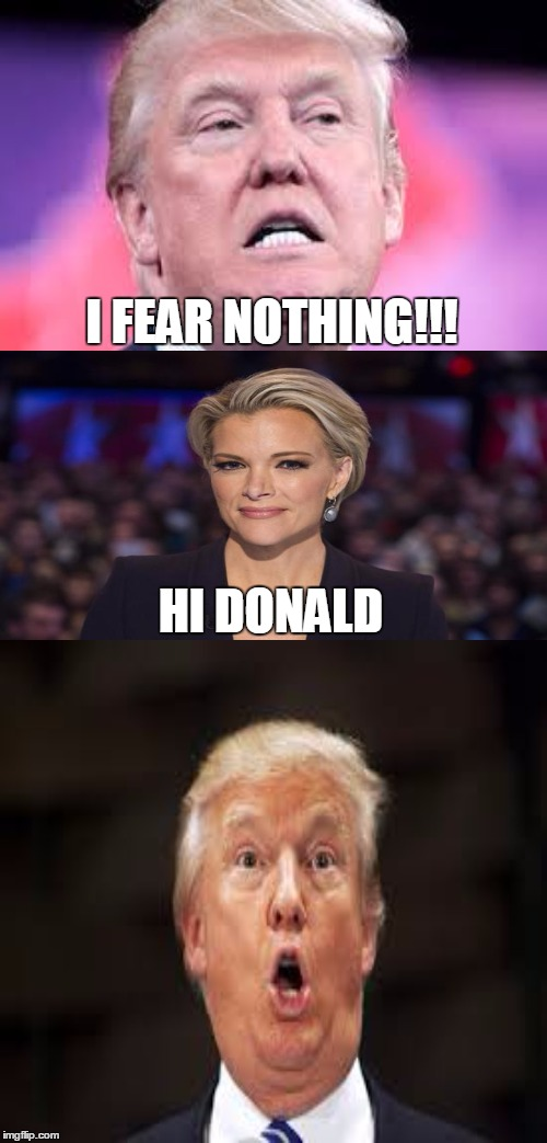 Ruh Ro!!!! |  I FEAR NOTHING!!! HI DONALD | image tagged in memes,donald trump,megyn kelly,president 2016 | made w/ Imgflip meme maker
