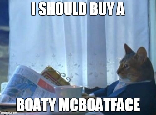 It's a wonderful time to be alive | I SHOULD BUY A BOATY MCBOATFACE | image tagged in memes,i should buy a boat cat,boaty mcboatface | made w/ Imgflip meme maker