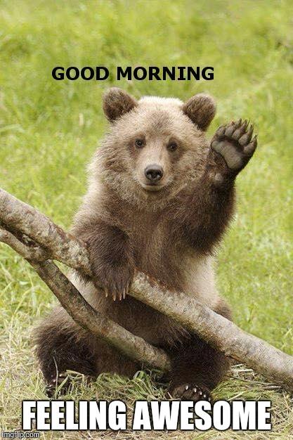 Good Morning Meme Creator : Good morning imgflip