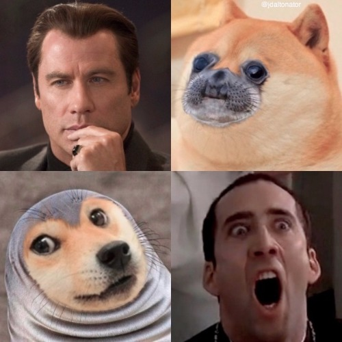 I'd like to take his...his face...off. | image tagged in face off,john travolta,nicolas cage,doge,awkward moment sealion | made w/ Imgflip meme maker