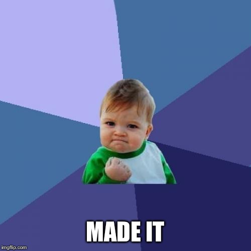 Success Kid Meme | MADE IT | image tagged in memes,success kid | made w/ Imgflip meme maker