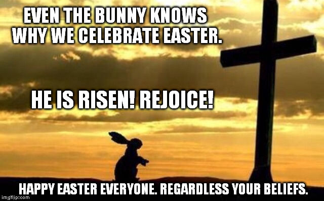 Even the bunny knows why we celebrate Easter. | EVEN THE BUNNY KNOWS WHY WE CELEBRATE EASTER. HAPPY EASTER EVERYONE. REGARDLESS YOUR BELIEFS. HE IS RISEN! REJOICE! | image tagged in easter,happy easter,christianity,jesus,jesus christ,holiday | made w/ Imgflip meme maker