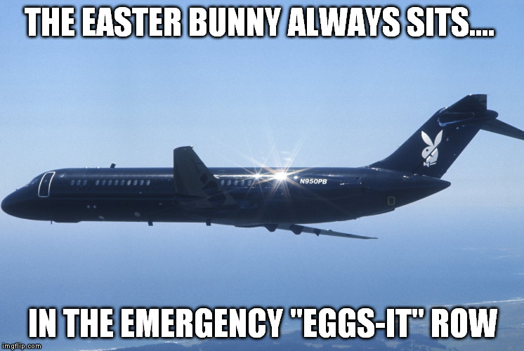 "Easter bunny travels too...  | THE EASTER BUNNY ALWAYS SITS.... IN THE EMERGENCY ""EGGS-IT"" ROW 
