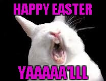 HAPPY EASTER YAAAAA'LLL | made w/ Imgflip meme maker