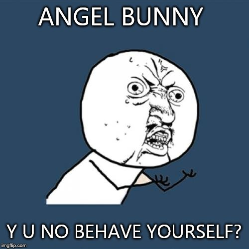 Y U No Meme | ANGEL BUNNY Y U NO BEHAVE YOURSELF? | image tagged in memes,y u no | made w/ Imgflip meme maker