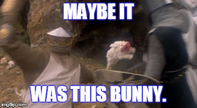 MAYBE IT WAS THIS BUNNY. | made w/ Imgflip meme maker
