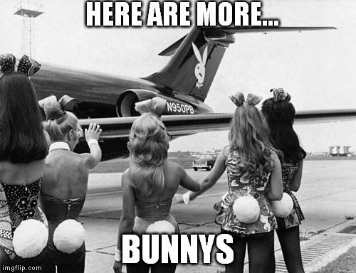 HERE ARE MORE... BUNNYS | made w/ Imgflip meme maker