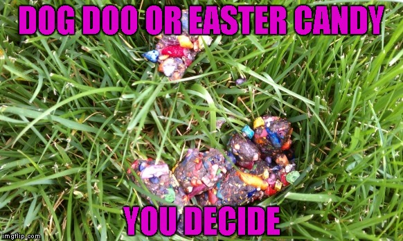 DOG DOO OR EASTER CANDY YOU DECIDE | made w/ Imgflip meme maker