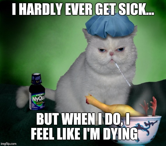 Sick Cat | I HARDLY EVER GET SICK... BUT WHEN I DO, I FEEL LIKE I'M DYING | image tagged in sick cat | made w/ Imgflip meme maker