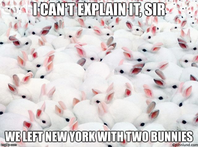 I CAN'T EXPLAIN IT, SIR WE LEFT NEW YORK WITH TWO BUNNIES | made w/ Imgflip meme maker