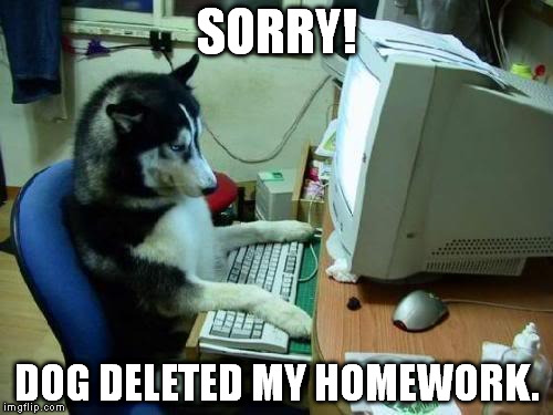 dog on computer | SORRY! DOG DELETED MY HOMEWORK. | image tagged in dog on computer | made w/ Imgflip meme maker