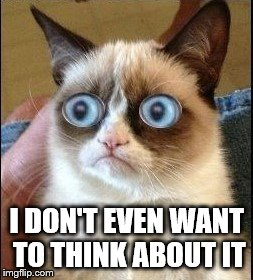Grumpy Cat Shocked | I DON'T EVEN WANT TO THINK ABOUT IT | image tagged in grumpy cat shocked | made w/ Imgflip meme maker