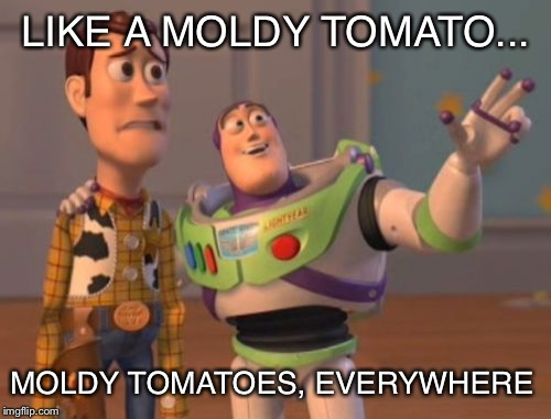 X, X Everywhere Meme | LIKE A MOLDY TOMATO... MOLDY TOMATOES, EVERYWHERE | image tagged in memes,x,x everywhere,x x everywhere | made w/ Imgflip meme maker