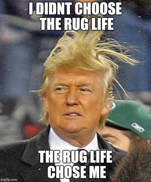 Donald Trumph hair - Imgflip