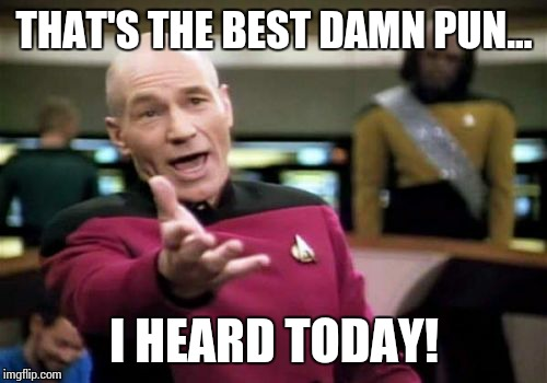 Picard Wtf Meme | THAT'S THE BEST DAMN PUN... I HEARD TODAY! | image tagged in memes,picard wtf | made w/ Imgflip meme maker