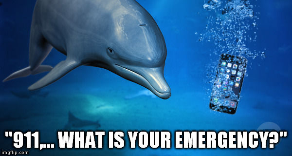 """911,... WHAT IS YOUR EMERGENCY?"" 
