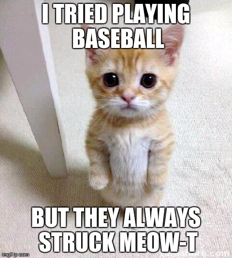 Cute Cat |  I TRIED PLAYING BASEBALL; BUT THEY ALWAYS STRUCK MEOW-T | image tagged in memes,cute cat | made w/ Imgflip meme maker