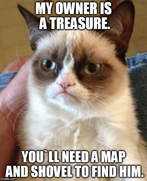 Grumpy Cat Meme | MY OWNER IS A TREASURE. YOU`LL NEED A MAP AND SHOVEL TO FIND HIM. | image tagged in memes,grumpy cat | made w/ Imgflip meme maker