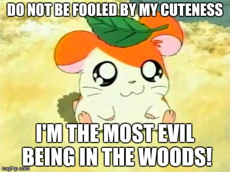 Hamtaro | DO NOT BE FOOLED BY MY CUTENESS I'M THE MOST EVIL BEING IN THE WOODS! | image tagged in memes,hamtaro | made w/ Imgflip meme maker
