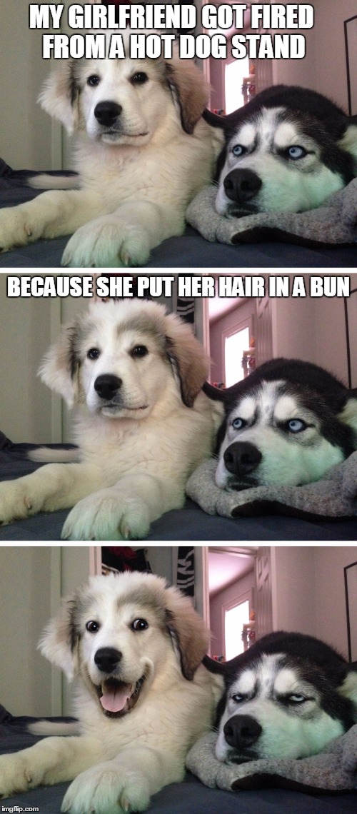 Bad pun dogs | MY GIRLFRIEND GOT FIRED FROM A HOT DOG STAND BECAUSE SHE PUT HER HAIR IN A BUN | image tagged in bad pun dogs,crappy memes,hot dog,puns,bad pun | made w/ Imgflip meme maker