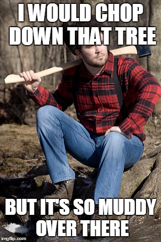 Solemn Lumberjack | I WOULD CHOP DOWN THAT TREE BUT IT'S SO MUDDY OVER THERE | image tagged in memes,solemn lumberjack | made w/ Imgflip meme maker