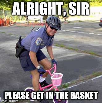 ALRIGHT, SIR PLEASE GET IN THE BASKET | made w/ Imgflip meme maker