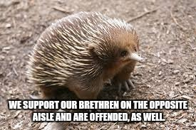 WE SUPPORT OUR BRETHREN ON THE OPPOSITE AISLE AND ARE OFFENDED, AS WELL. | made w/ Imgflip meme maker