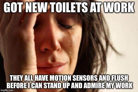 First World Problems Meme | GOT NEW TOILETS AT WORK THEY ALL HAVE MOTION SENSORS AND FLUSH BEFORE I CAN STAND UP AND ADMIRE MY WORK | image tagged in memes,first world problems,AdviceAnimals | made w/ Imgflip meme maker