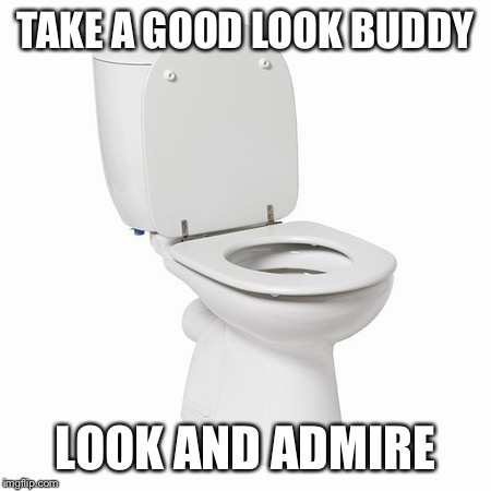 Toilet | TAKE A GOOD LOOK BUDDY LOOK AND ADMIRE | image tagged in funny,memes,toilet | made w/ Imgflip meme maker