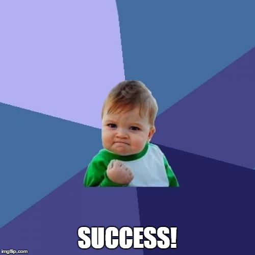 SUCCESS! | image tagged in memes,success kid | made w/ Imgflip meme maker