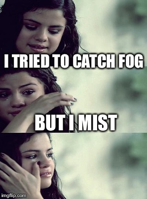 I TRIED TO CATCH FOG BUT I MIST | made w/ Imgflip meme maker