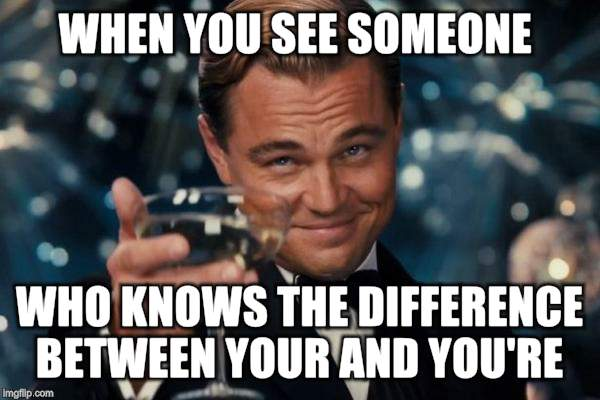 Leonardo Dicaprio Cheers Meme | WHEN YOU SEE SOMEONE WHO KNOWS THE DIFFERENCE BETWEEN YOUR AND YOU'RE | image tagged in memes,leonardo dicaprio cheers | made w/ Imgflip meme maker