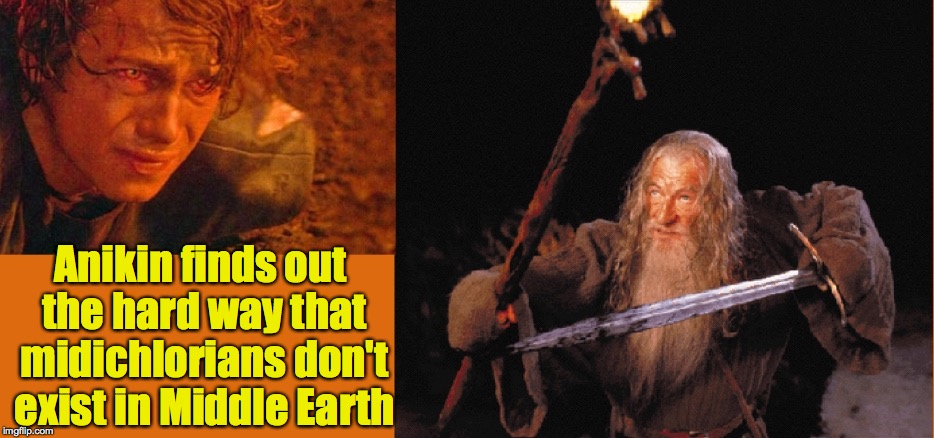 Mixing genres again | Anikin finds out the hard way that midichlorians don't exist in Middle Earth | image tagged in gandalf,anikin,middle earth | made w/ Imgflip meme maker