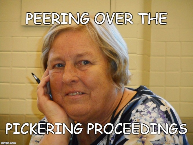 PICKERING PROPOSAL PUNCTUATED! | PEERING OVER THE PICKERING PROCEEDINGS | image tagged in building,new school,plans | made w/ Imgflip meme maker