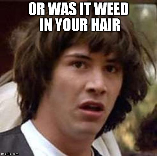 Conspiracy Keanu Meme | OR WAS IT WEED IN YOUR HAIR | image tagged in memes,conspiracy keanu | made w/ Imgflip meme maker