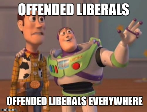 X, X Everywhere | OFFENDED LIBERALS OFFENDED LIBERALS EVERYWHERE | image tagged in memes,x x everywhere | made w/ Imgflip meme maker