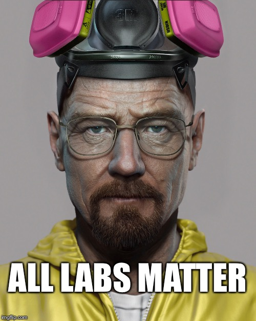 Walter White  | ALL LABS MATTER | image tagged in walter white | made w/ Imgflip meme maker