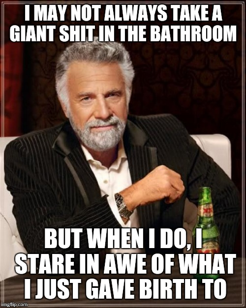 The Most Interesting Man In The World Meme | I MAY NOT ALWAYS TAKE A GIANT SHIT IN THE BATHROOM BUT WHEN I DO, I STARE IN AWE OF WHAT I JUST GAVE BIRTH TO | image tagged in memes,the most interesting man in the world | made w/ Imgflip meme maker