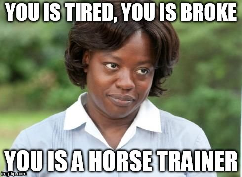 the help |  YOU IS TIRED, YOU IS BROKE; YOU IS A HORSE TRAINER | image tagged in the help | made w/ Imgflip meme maker