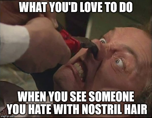 11tbsx nostril imgflip,Nose Hair Meme