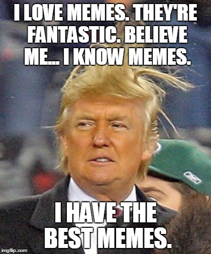 Trump Has The Best Memes | I LOVE MEMES. THEY'RE FANTASTIC. BELIEVE ME... I KNOW MEMES. I HAVE THE BEST MEMES. | image tagged in trump hair | made w/ Imgflip meme maker