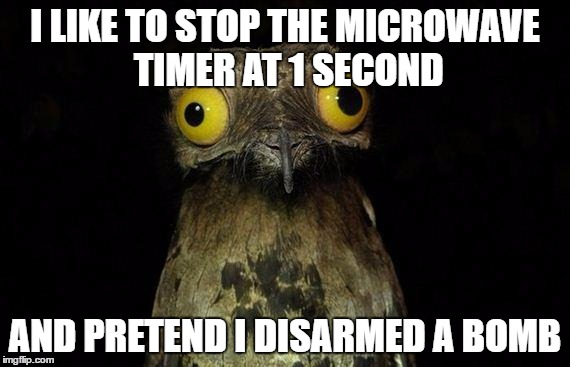 Weird Stuff I Do Potoo Meme | I LIKE TO STOP THE MICROWAVE TIMER AT 1 SECOND AND PRETEND I DISARMED A BOMB | image tagged in memes,weird stuff i do potoo | made w/ Imgflip meme maker