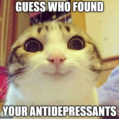 Say What You Want About Google, The Stuff I Find Is Amazing! | GUESS WHO FOUND YOUR ANTIDEPRESSANTS | image tagged in memes,smiling cat | made w/ Imgflip meme maker