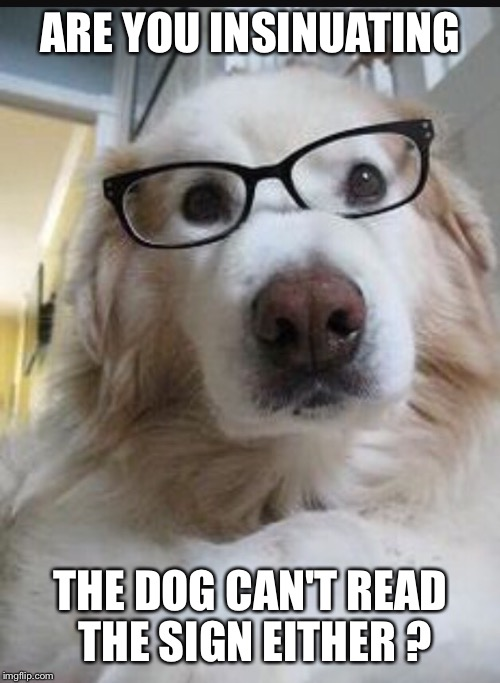 ARE YOU INSINUATING THE DOG CAN'T READ THE SIGN EITHER ? | made w/ Imgflip meme maker