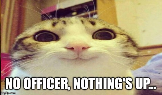 NO OFFICER, NOTHING'S UP... | made w/ Imgflip meme maker